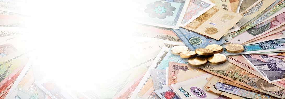 WE HAVE GOT ALL YOUR FOREIGN EXCHANGE REQUIREMENTS COVERED
